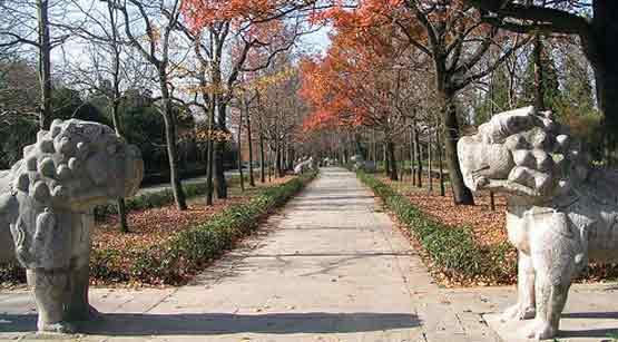Nanjing Park